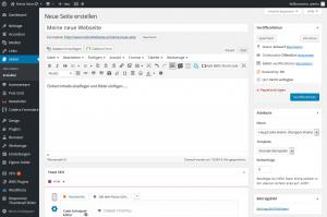 Der WordPress Editor: einfach Texte und Bilder einfügen